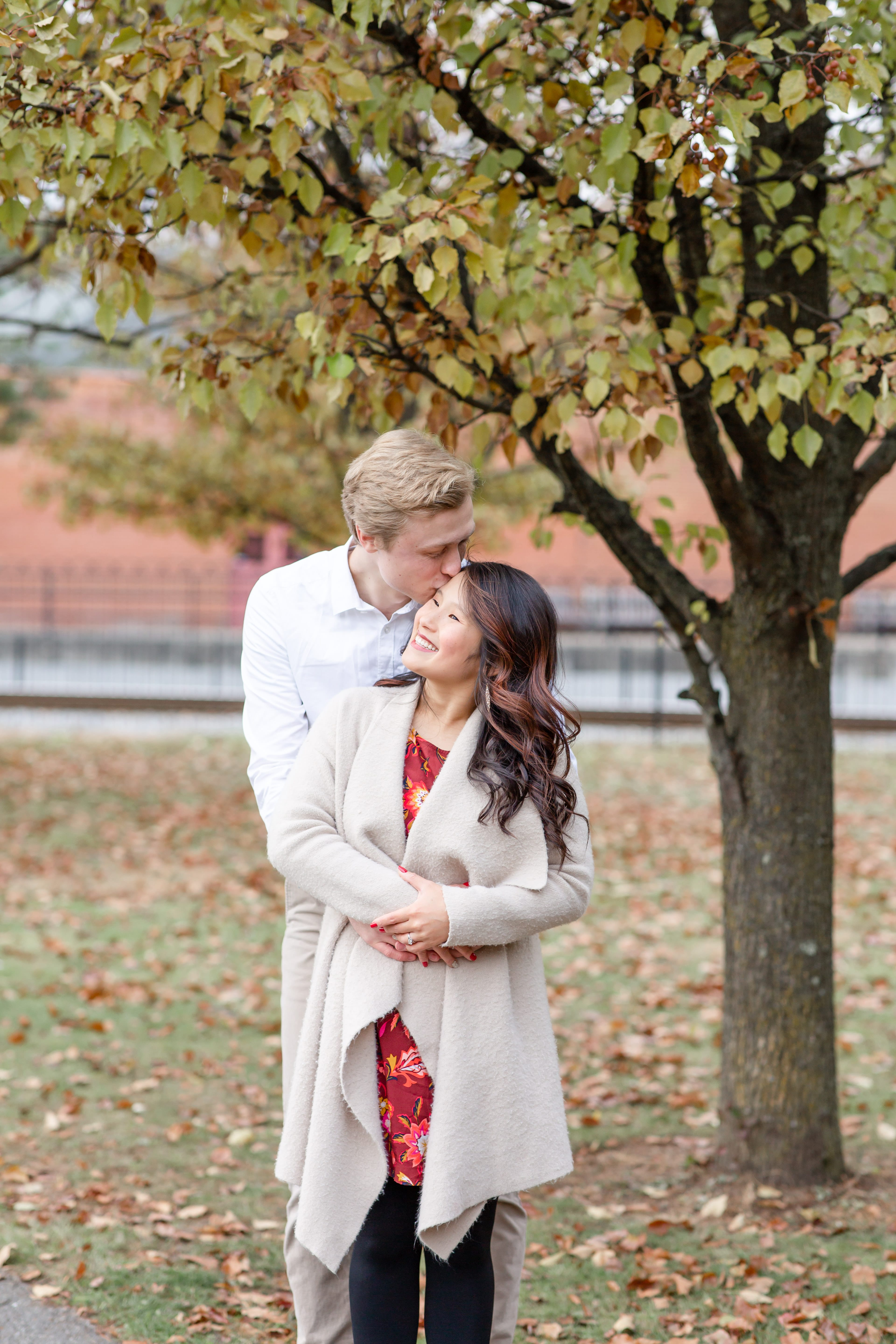 Engaged couple with a fall tree at Talleyrand Park in Bellefonte